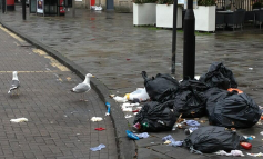 Additional £25k in funding earmarked to help tackle Bath gull menace