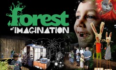 Forest of Imagination event takes root in Bath for a third year