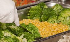 More choice on offer for community meals service thanks to change in provider