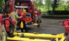 Fire crews rescue cow after it escapes from field and ends up on Saltford riverbank