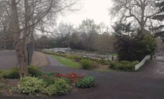 Locals invited to have their say on proposals to improve Sydney Gardens