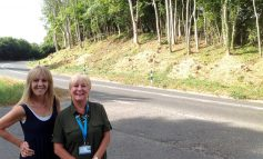Councillor campaign sees overgrown hedges and trees removed on A367