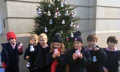 Locals encouraged to discover the Ten Tree Trail across Bath this Christmas