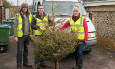Locals encouraged to book early for Dorothy House Christmas tree collection