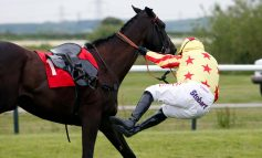 University sport scientists turn to horse racing in bid to tackle spinal injuries