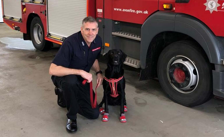 Avon Fire & Rescue Service welcomes four-legged fire investigation recruit