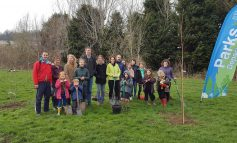Community comes together to help plant hundreds of trees across Bath