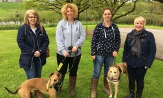 Popular Peasedown St John party event set to host 2nd annual dog show