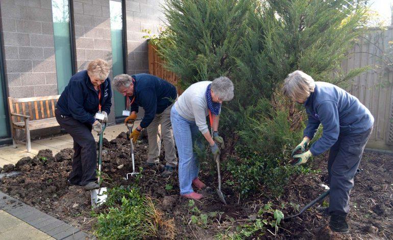 Gardening volunteers at the RUH in Bath