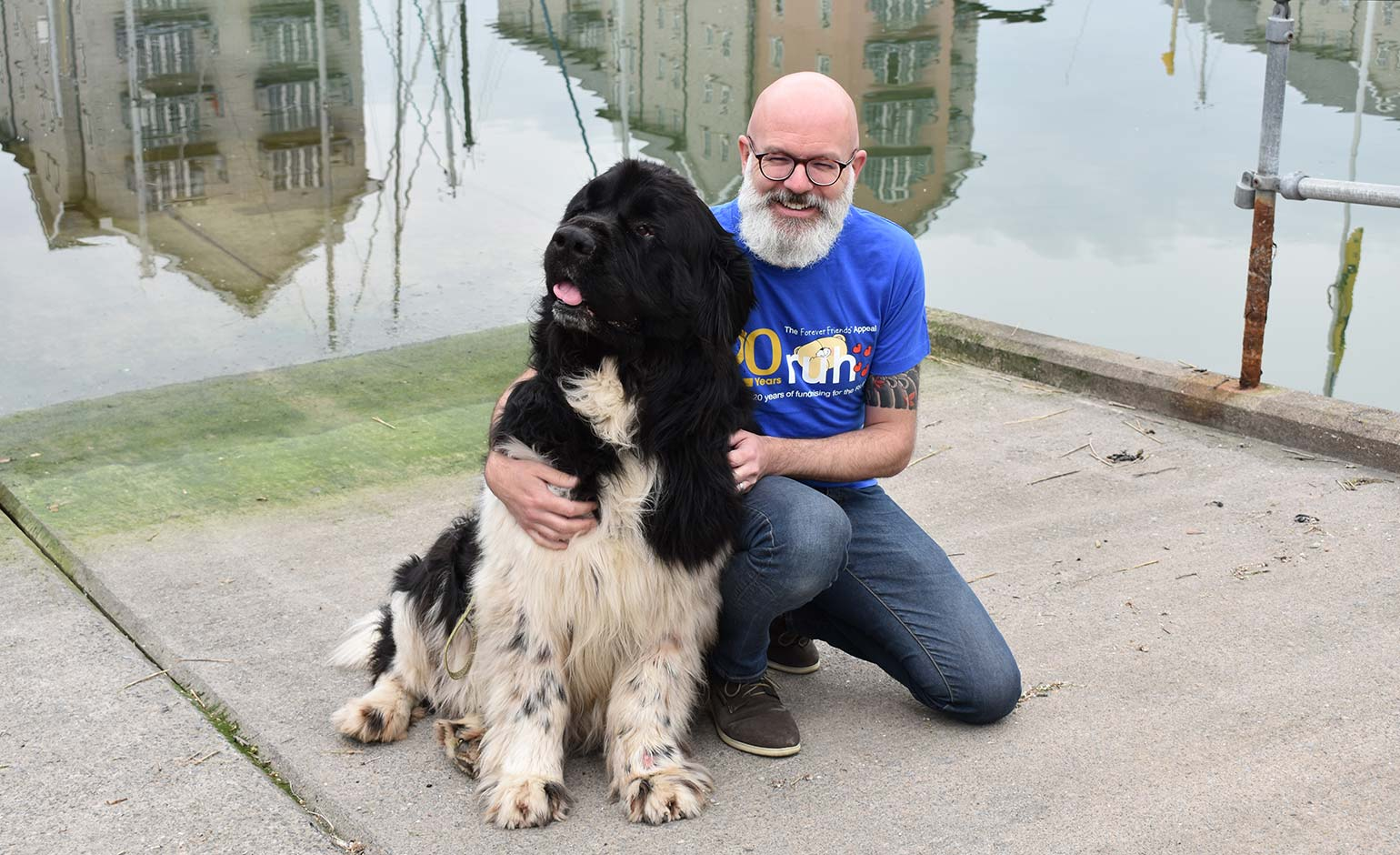 Last chance to take the plunge and be rescued by a Newfoundland dog | Bath Echo