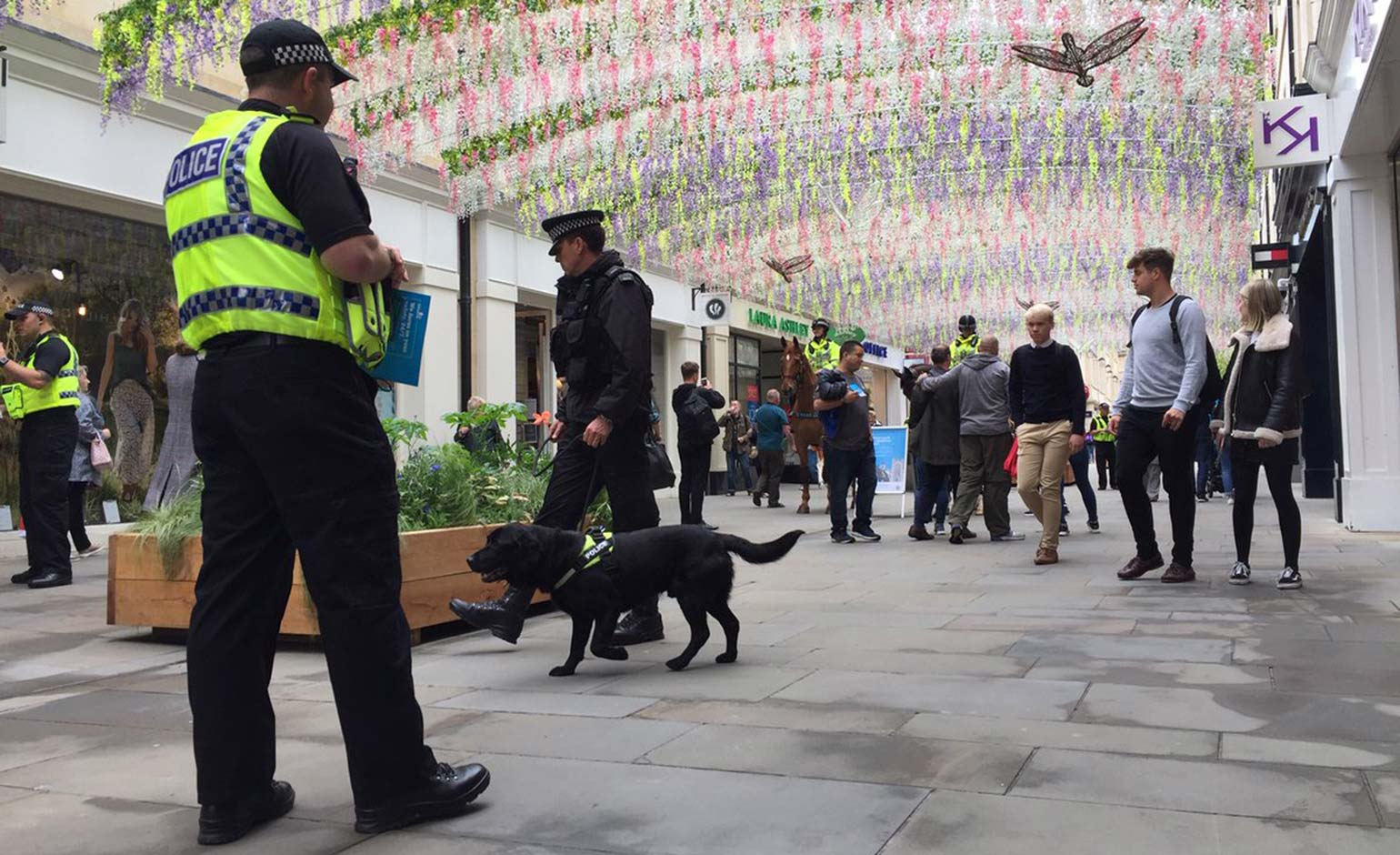 Avon and Somerset Police launch new tactic to help disrupt criminal activity | Bath Echo
