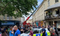 Bath firefighters use turntable ladder to rescue baby gull from netting