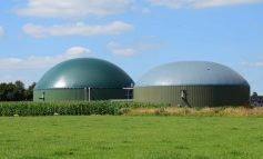 "Keynsham residents fear ""putrid"" smell from biogas plant development"