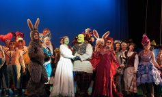 Review | Shrek The Musical – The Theatre Royal, Bath