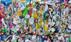Bath university scientists discover new way of recycling plant-based plastics