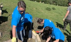700 hours of volunteering time provided by Wessex Water staff across Bath