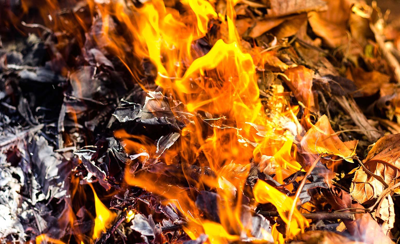 Residents being asked to avoid having bonfires during coronavirus pandemic