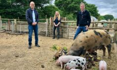 Roper Rhodes to match new donations to Bath City Farm's £50,000 appeal